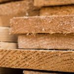 Wood as a Building Material: The Best The Forest Has To Offer